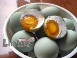Beragam Manfaat Telur Bebek Asin Bagi Kesehatan dan Imunitas Tubuh
